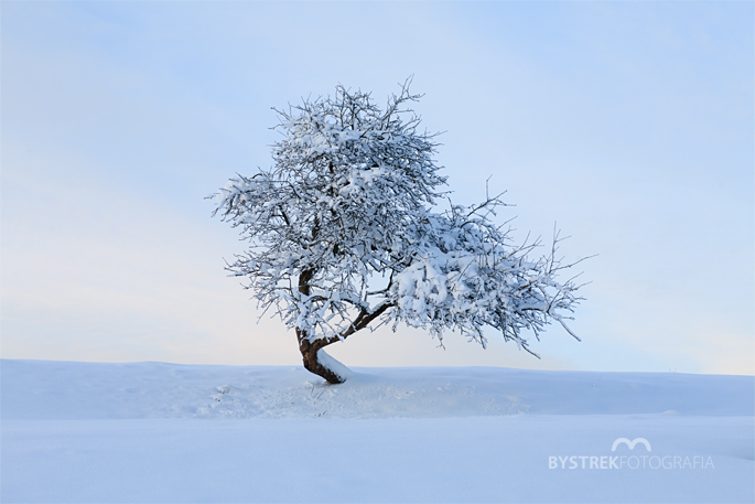 Beskid Niski zima