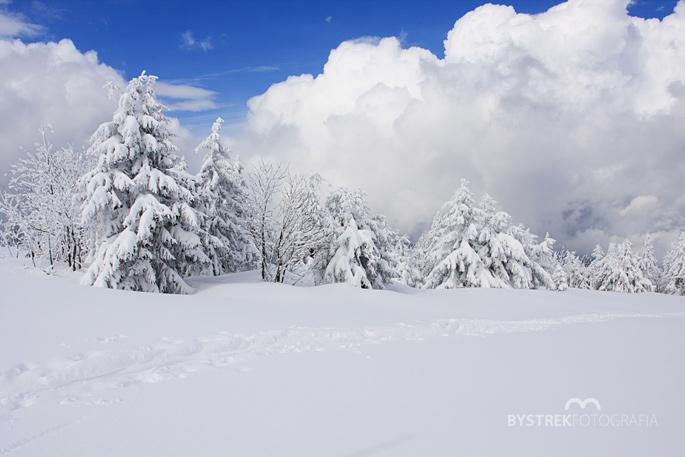 zimowa widokówka